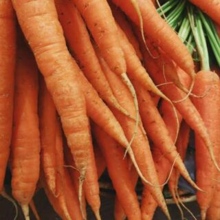 Gulerødder